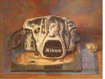 De Nikon van Vermeer