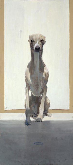 Hondje zonder bal