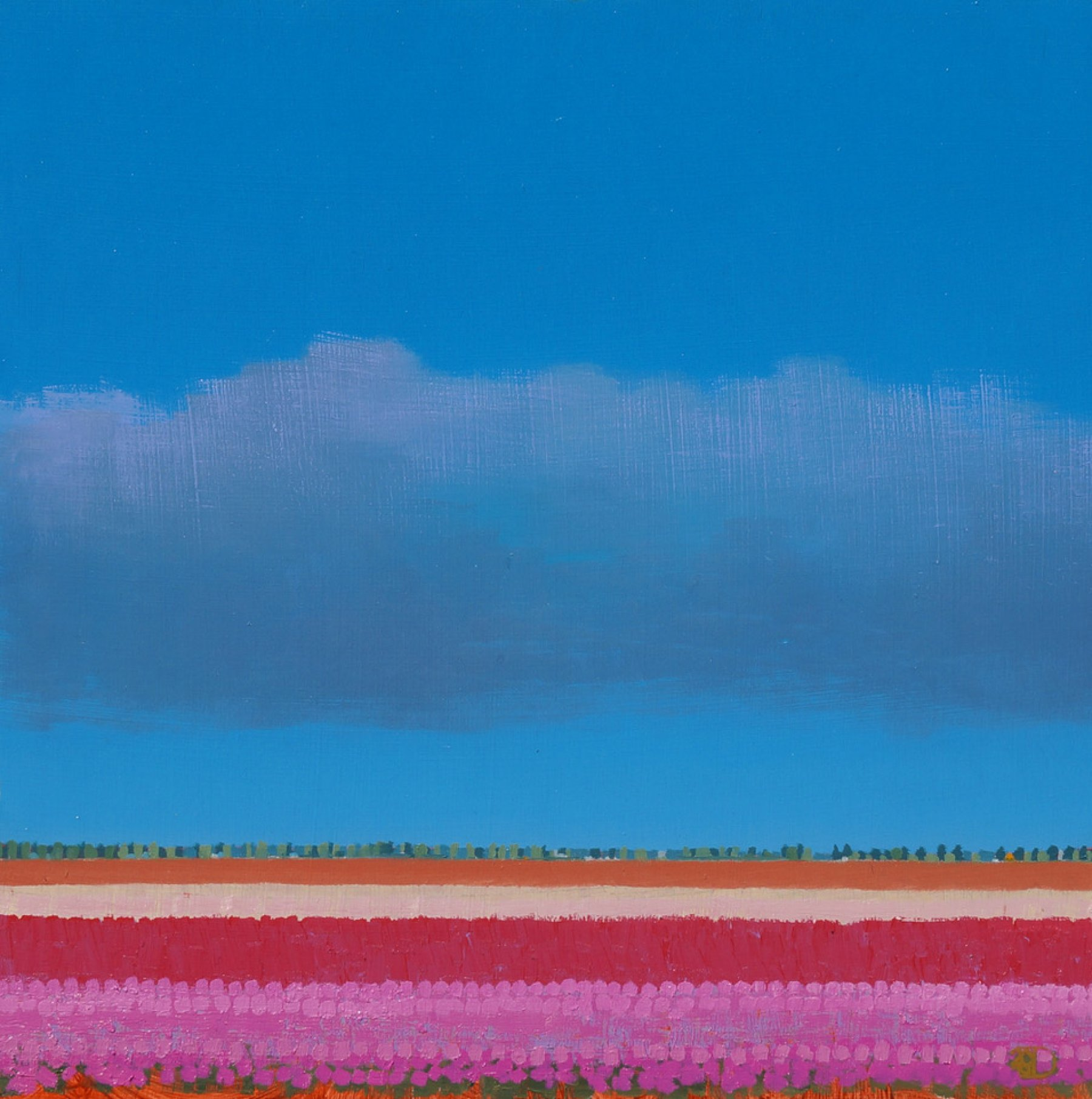 Roze Tulpenveld